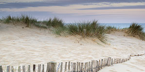 Stay 2 Nights Save 20% at Wellfleet Hotel