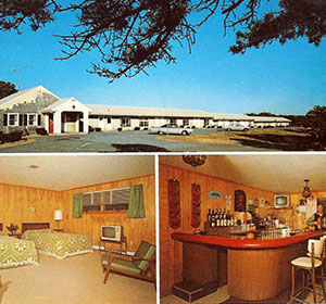 Wellfleet Motel & Lodge Bar and Guestroom